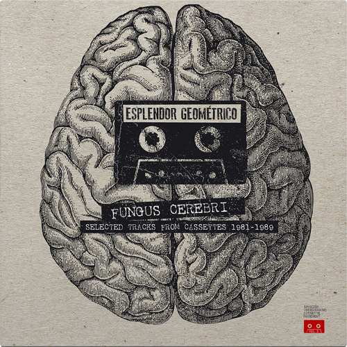 FUNGUS CEREBRI - Selected Tracks From Cassettes 1981-1989 (grey-red vinyl edition)